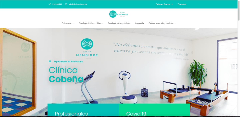 web Clinica Cobeña